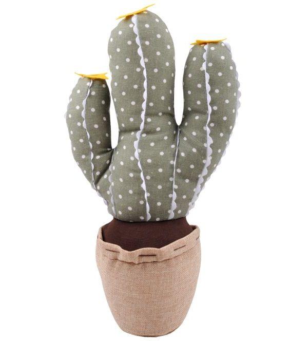 Opritor usa cactus Saloon Vert 25 cm